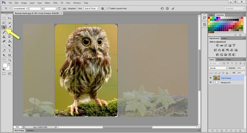 cara resize gambar dengan photoshop